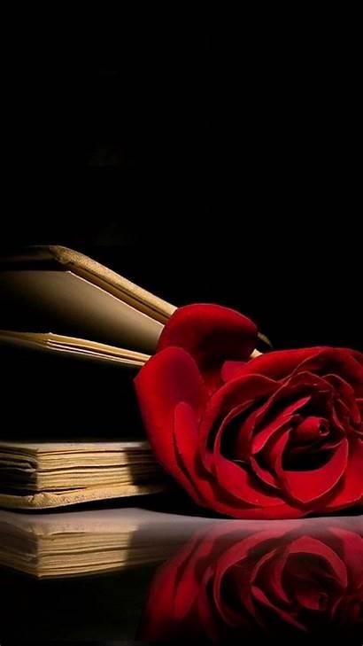 Rose Wallpapers Supreme