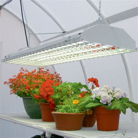 Artificial Light For Plants by How To Select The Best Grow Light For Indoor Growing