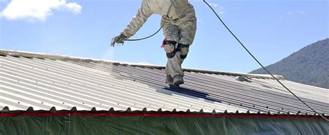 How to paint a roof  Bunnings Warehouse