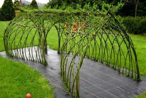 willow tunnel garden life pinterest forests forest