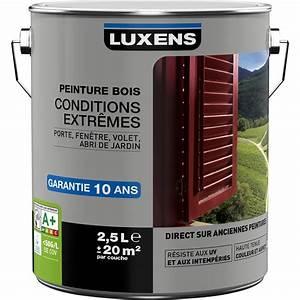 Peinture Bois Extrieur Conditions Extrmes LUXENS Blanc