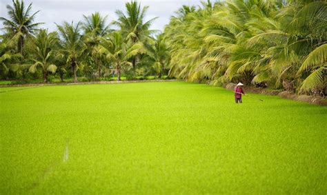 Integrated Landscape Management and the SDGs | Water, Land ...