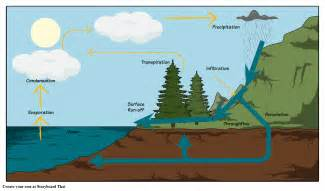 water cycle diagram storyboard  oliversmith