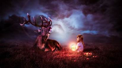 8k Fantasy Deer Night Sky Wallpapers 4k