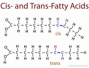 Eli5 The Different Fat Types  Mono