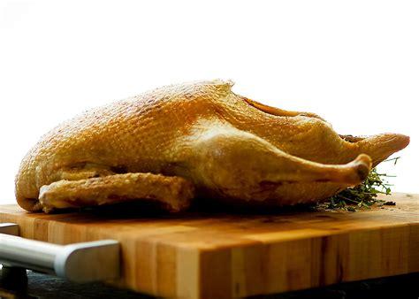 cuisiner un canard entier la méthode infaillible de cuisson d un canard entier rôti