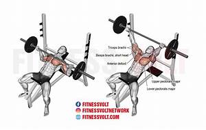 Incline Reverse-Grip Barbell Bench Press (Chest) – Fitness ...