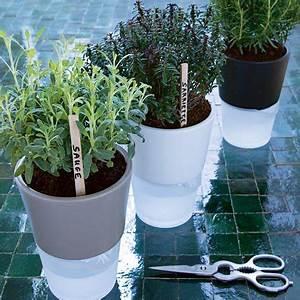 Distributeur D Eau Pour Plante : un pot r servoir d 39 eau pour vos plantes aromatiques marie claire ~ Dode.kayakingforconservation.com Idées de Décoration
