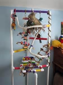 DIY PVC Bird Play Gym Stands