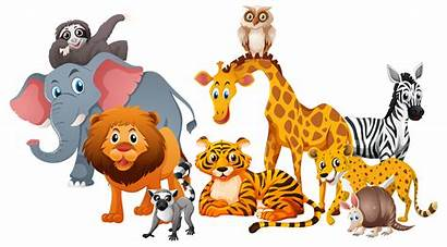 Animals Wild Background Different Types Vector Vecteezy