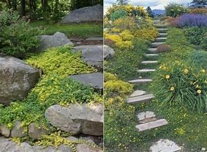 les 81 meilleures images du tableau jardin plantes With marvelous amenager jardin en pente 13 creer un bassin de jardin