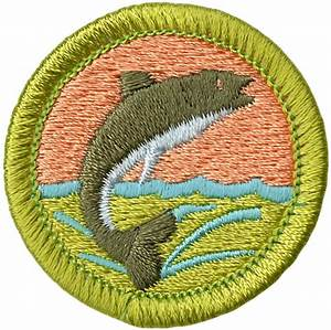 fishing merit badge emblem boy scouts of america