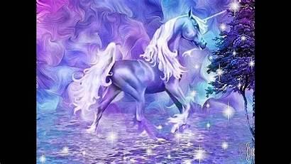 Unicorn Unicorns Pretty Fantasy