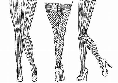 Legs Drawing Vector Female Illustrations Tights Leg