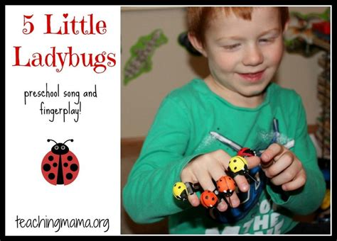 5 ladybugs song and fingerplay songs and ladybugs 994 | 8c8c3cf889a650887113230da68ee2f4