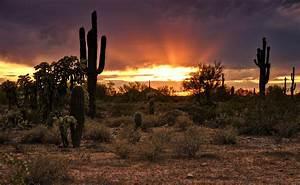 Sun Rays Over The Sonoran Desert Photograph by Saija Lehtonen
