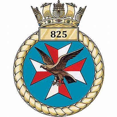 Squadron Naval Crest Dcs Ocu