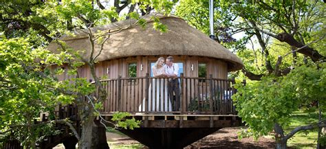 Devon Luxury Thatched Treehouse Built As 'ultimate Love