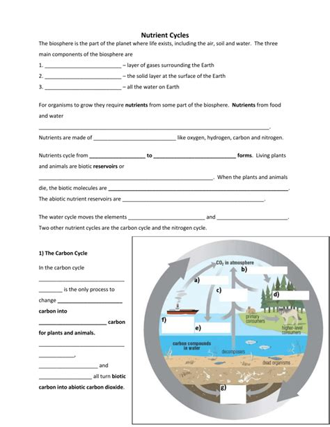 worksheet carbon cycle worksheet grass fedjp worksheet