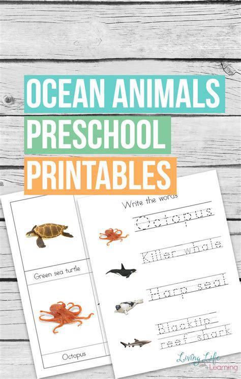 free animals preschool printables 795 | ocean animals preschool printables