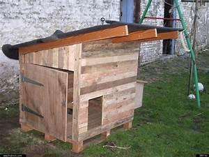 Cabane Pour Poule : fabriquer un poulailler en palettes ~ Melissatoandfro.com Idées de Décoration