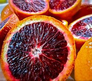 Moro Blood Orange Trees For Sale