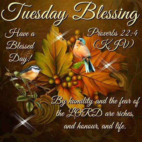 """If you like good morning bible quotes, you might love these ideas. TUESDAY BLESSING: Proverbs 22:4 (1611 KJV !!!!) """" By ..."""