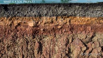 Soil Profile Definition Development Types Video With