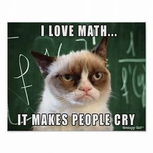 Grumpy Cat Poster- I love math it makes people cry Poster ...