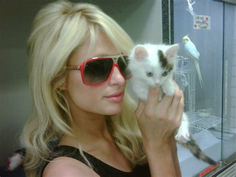 Paris Hilton Buys 20 Rabbits From The Pet