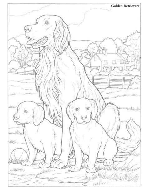 Golden Retriever Kleurplaat by Golden Retrievers Things To Colour Coloring Page
