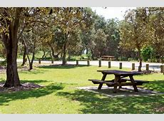 Angourie Bay picnic area NSW National Parks