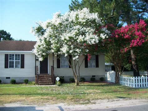 for rent in norfolk va best of 546 mcfarland rd norfolk va tidewater homes house for rent by houses for rent in norfolk va house plan 2017