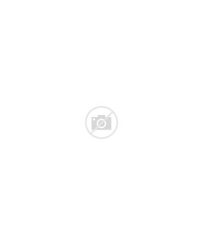 Designs Homes Plans Desert Cottage Deck Modern