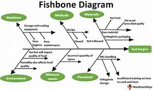 Fishbone Diagram  Meaning  Examples