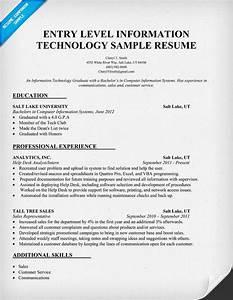 Sample Entry Level Information Technology Resume Resume Example Entry Level Information Technology Http