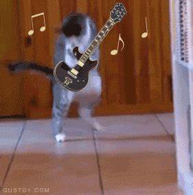 Found a gif of a cat bugging out, so I gave him a guitar ...