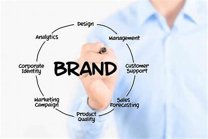 Brand Network Influential Networking