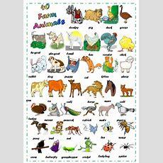Find 40 Farm Animals