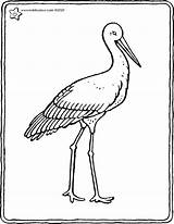 Stork Colouring Drawing Kiddicolour Receiver Mail sketch template