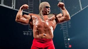 Scott Steiner Has Harsh Words For Triple H And Stephanie ...