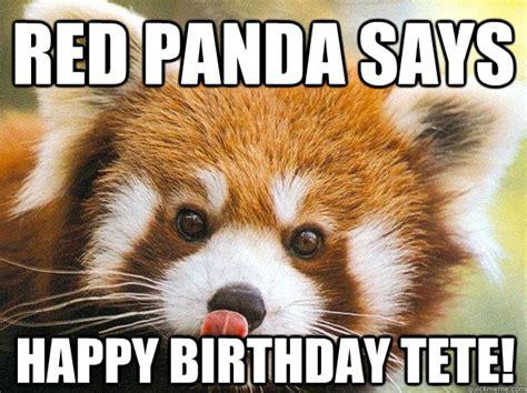 Red Panda Meme - red panda says happy birthday tete misc quickmeme
