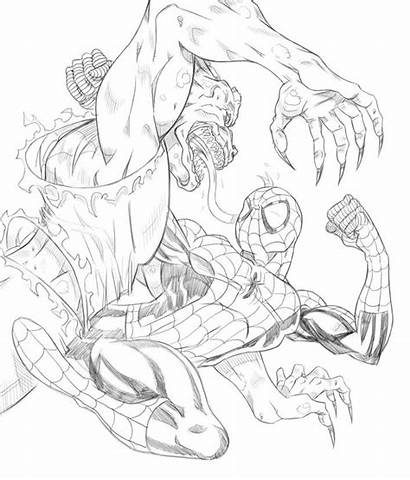 Coloring Amazing Pages Spiderman Spider Carnage