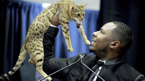 westminster dog show  added cats   official