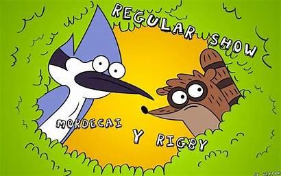 Regular Wallpapers Cartoon Network Adventure Imagenes Cast