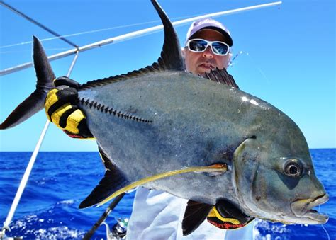jack fishing caranx lugubris ocean indian club mauritius rod rodrigues island ignobilis giant