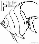 Coloring Fish Pages Butterfly Angelfish Printable Sheet Getcolorings sketch template