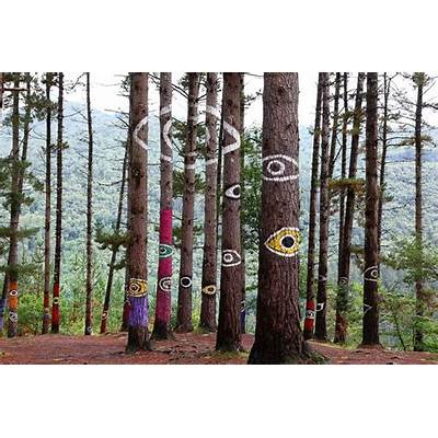 Bosque de Oma#Art ~~ Farben~spielPinterestPainted