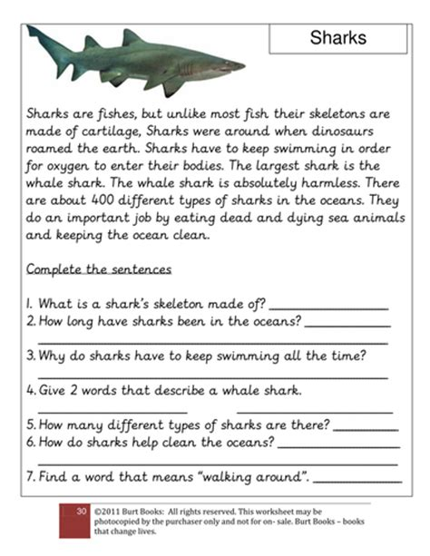 Cloze Procedure On Sharks By Coreenburt  Teaching Resources Tes