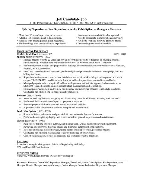 Sle Of Professional Resume Writing by Professional Resume Writing Software 28 Images Resume Writing Software Student Resume